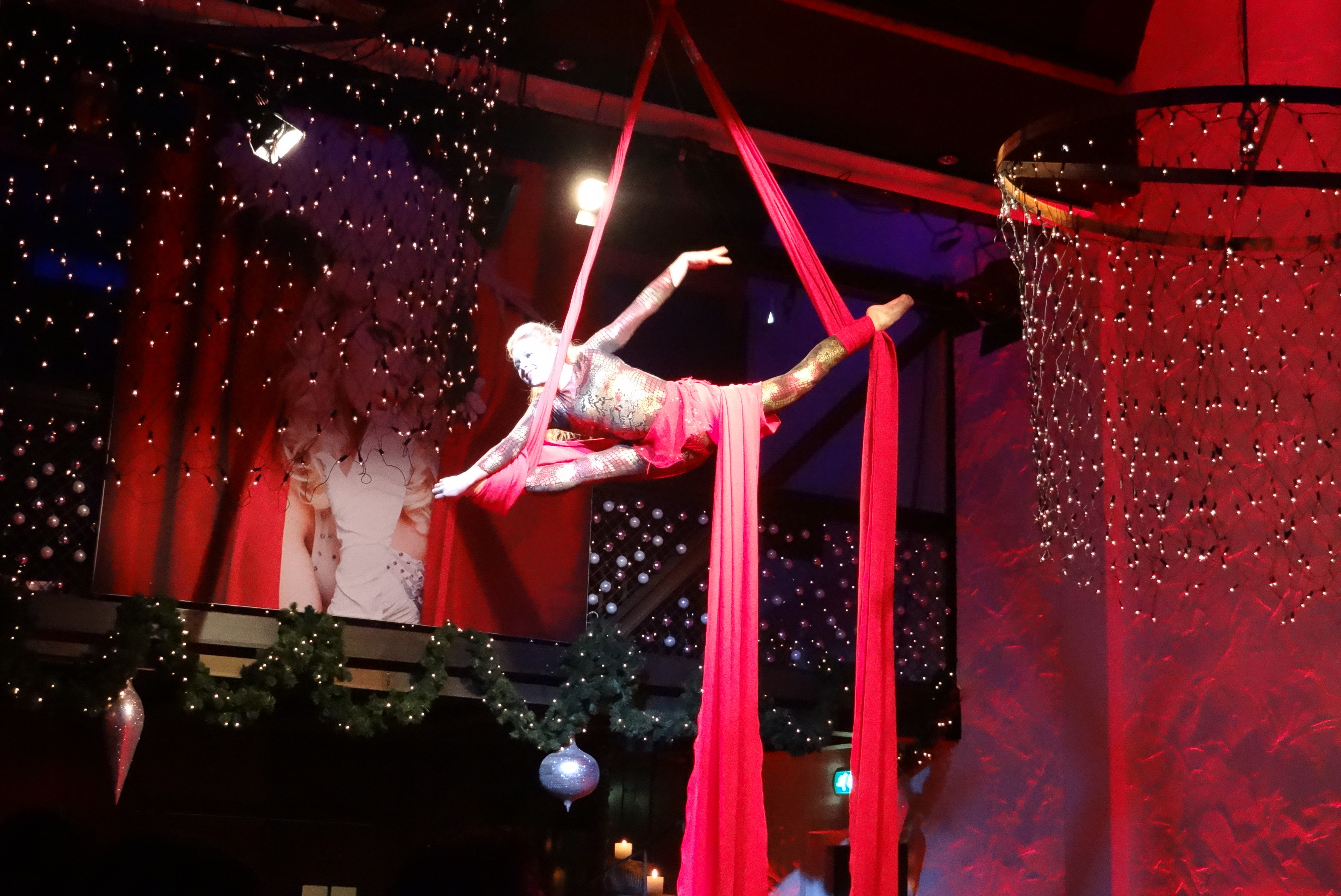 Aerial Acts & more!
