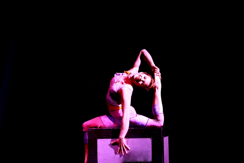 Wheel Sensation, Handstand, Out of the Box (2)